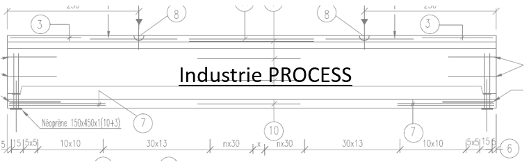 INDUSTRIE PROCESS